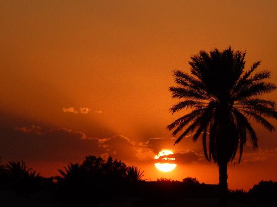 Gite Dans La Palmeraie: Coucher de soleil sur la dune