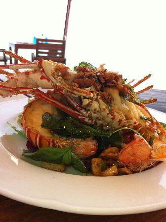 Coco Bodu Hithi: Lobster salad at Air (and that's a starter!)