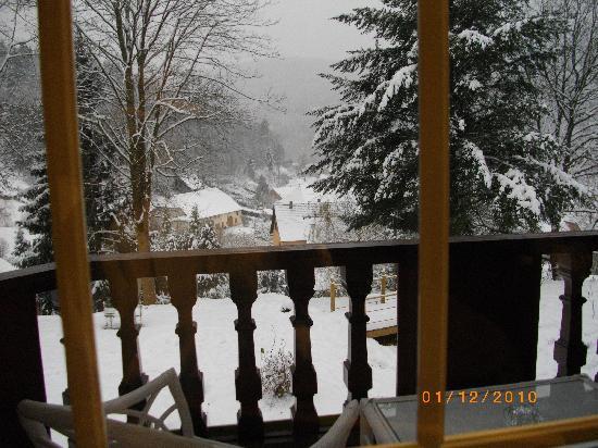 Hostellerie La Cheneaudiere - Relais & Chateaux: vue de la terrasse de la chambre