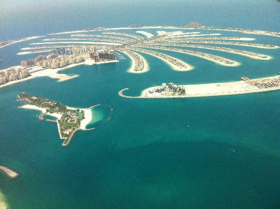 Seawings Seaplane Tours: View of The Palm
