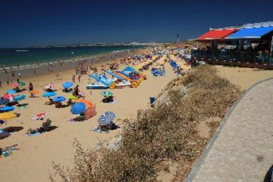 Albufeira Praia De Gale Beach Tripadvisor