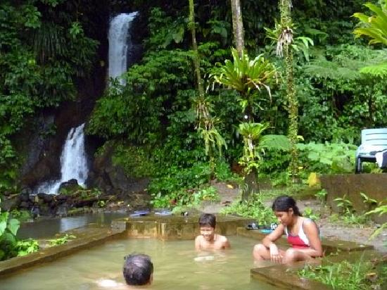 Papillote Wilderness Retreat: Papillote's 'own'  waterfall next to hot pool