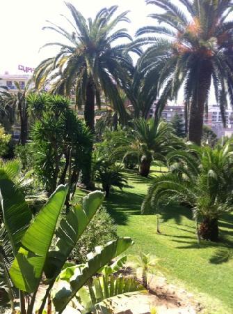 Gran Hotel Monterrey: Vue sur le parc