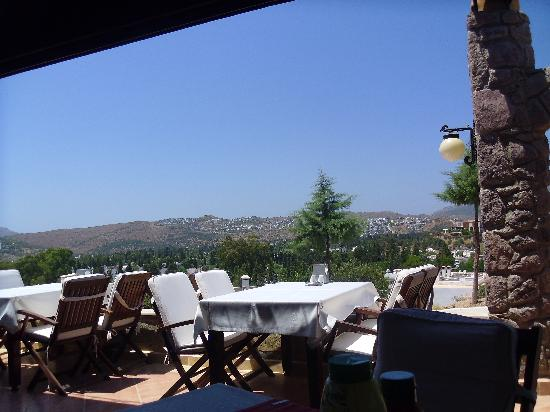 Queen Boutique Hotel: view from restaurant