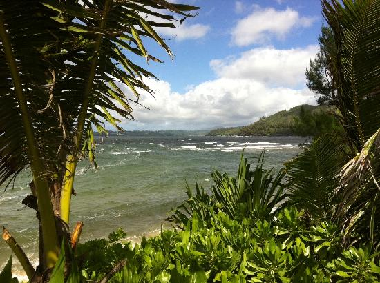 Hale Makai Cottages: View from our deck