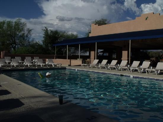 Mira Vista Resort : Swim pool with covered patio in background