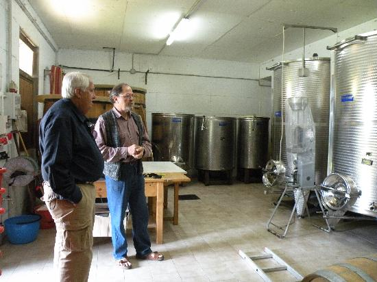 Il Palazzo : Winemaking lessons