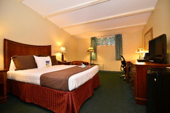 Best Western Plus Coach House: Single Queen Room