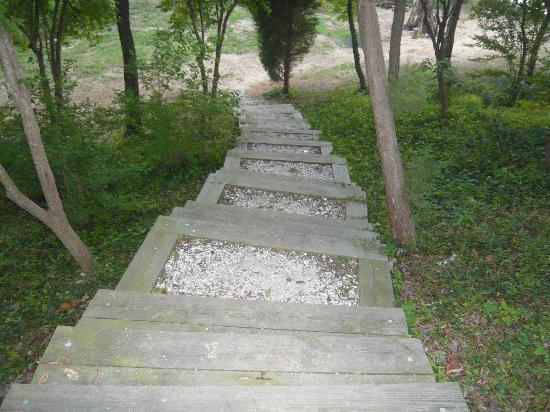 Great Oak Manor: Steps to the Beach