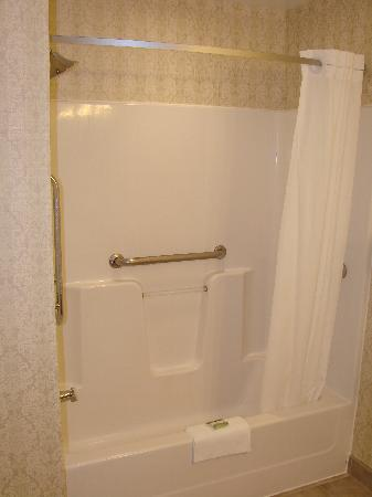 Fairfield Inn & Suites Ottawa Kanata: Shower and Tub