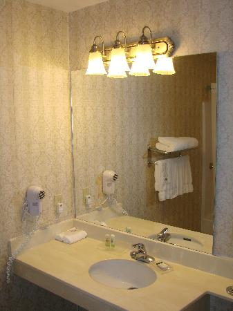 Fairfield Inn & Suites Ottawa Kanata: Bathroom