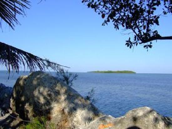 Diver's Cove : Dove Key
