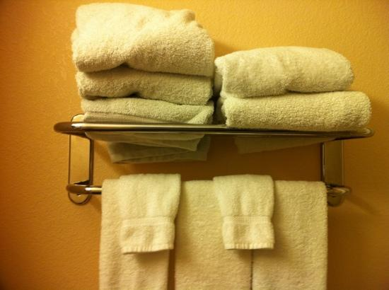 BEST WESTERN PLUS Kalamazoo Suites: grey bath towels!