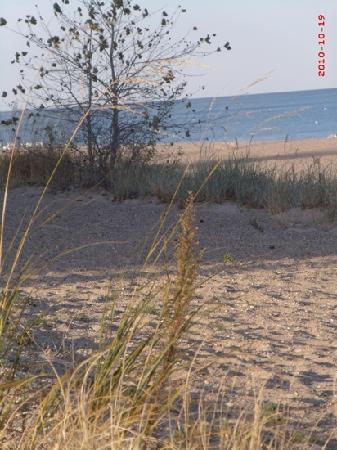 Illinois Beach State Park: walking on the beach