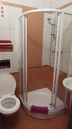 Na Ostrove Pension : the bathroom