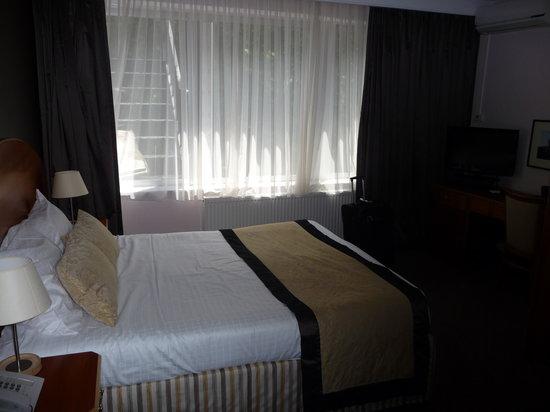 호텔 어젠더 루이스 사진