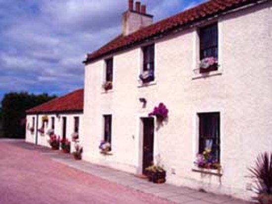 Edenside House