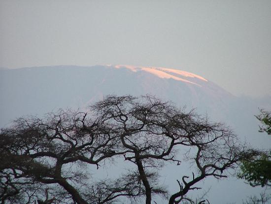 Sentrim Amboseli: Kilimangiaro