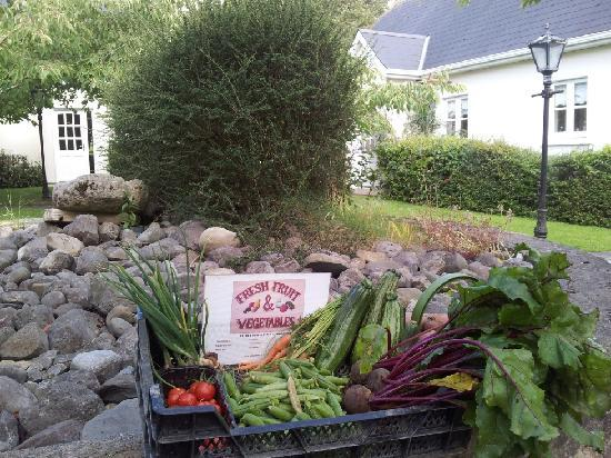 Croan Cottages: Free Veg box at cottages