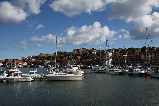 Whitehaven Guest House: Morning Marina