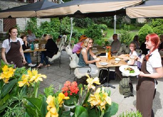 Leib Resto ja Aed: Our garden vol 2