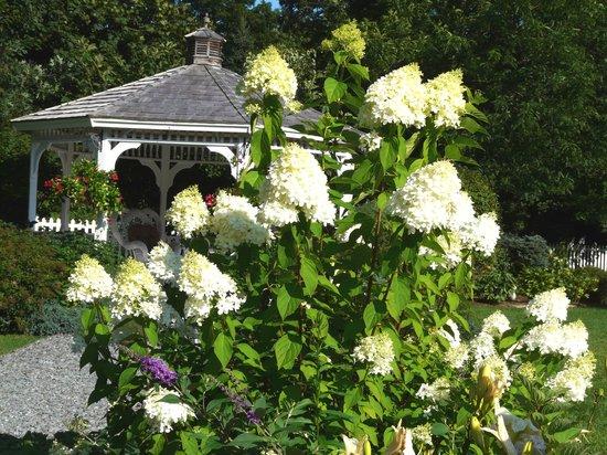 Lilac Inn Summer