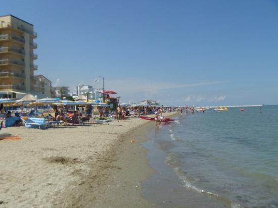 la spiaggia - Foto di Hotel David, Lido Di Savio - TripAdvisor