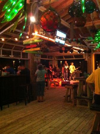 Margaritaville Beach Hotel: The Land Shark