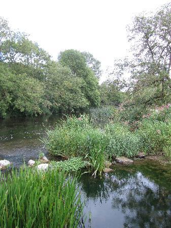 Lawcus Farm Guest House: king river