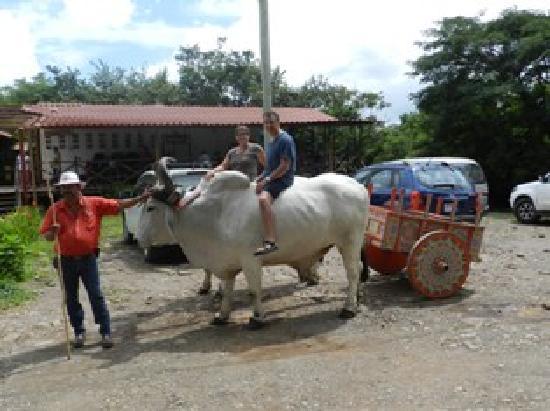 Playas del Coco, كوستاريكا: Rincón de la Vieja