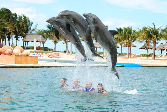 Delphinus Punta Cancun: EL SALTO
