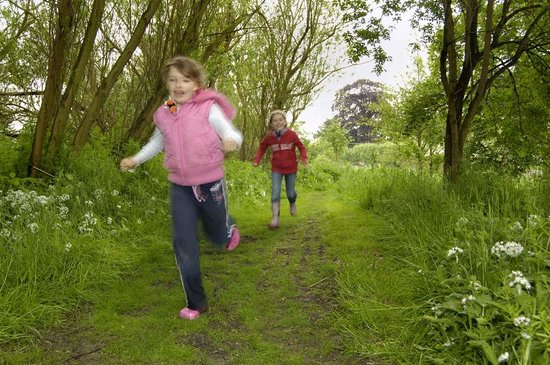 Museum of East Anglian Life: Running through the Museum Grounds