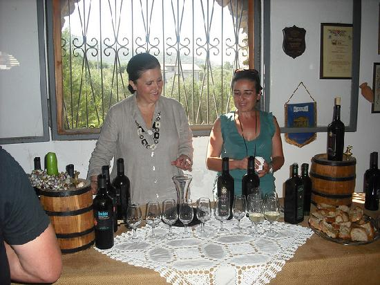 Agriturismo Marino : Wine and oil tasting at the vineyard