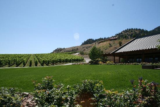Hester Creek Estate Winery Villa : Villa on hillside above winery