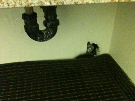 Americas Best Value Inn Bakersfield: hole in wall near plumbing