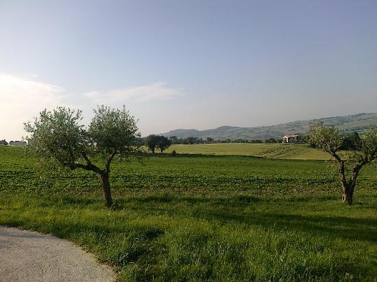 Agriturismo Raggioverde: il panorama