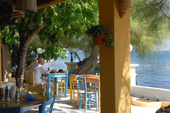 Roussos Restaurant: An inside look.