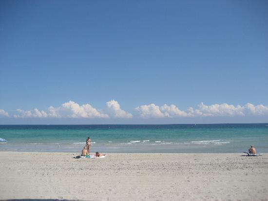 Best Western Plus Fort Lauderdale Airport South Inn & Suites: Pisanti
