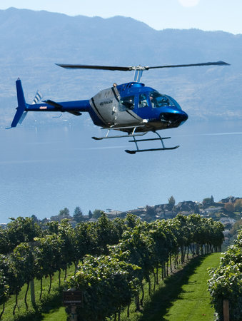 Valhalla Helicopters: Flying over the vines