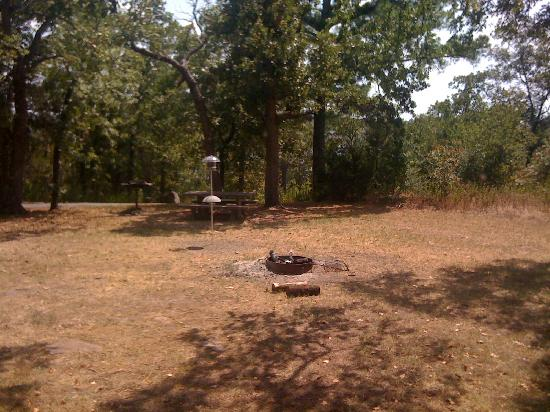 Lake Tenkiller State Park: view from window toward lake - picnic table & fire pit