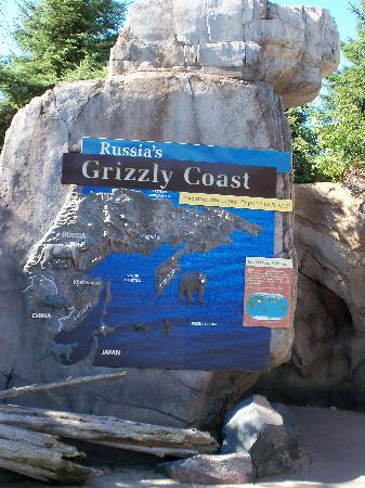 Apple Valley, MN: Russia's Grizzly Coast, one of our favorite exhibits.