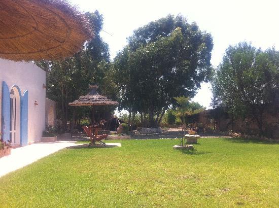 """Villa Daba: Un des jardins devant la chambre """"Essaouira"""" (au fond la tente berbère)"""