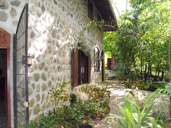 Casa Cangrejal B&B Hotel : Oh, so tropical!
