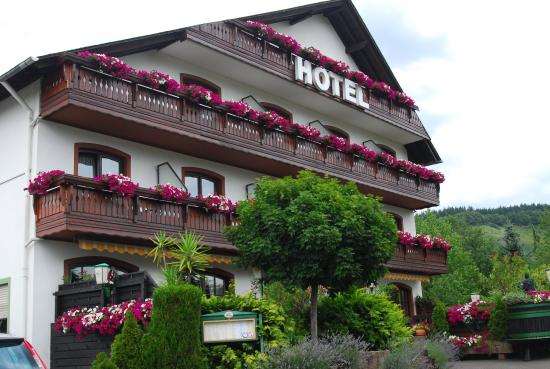 Schweich, Germany: Front of hotel