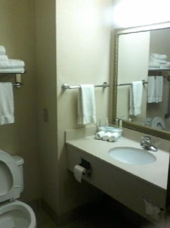 Holiday Inn Express Owasso: Spotlessly clean with oversized towels
