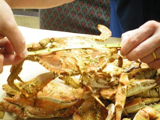 """Ernie's Original Crab House: Extra Large crab (7"""")"""