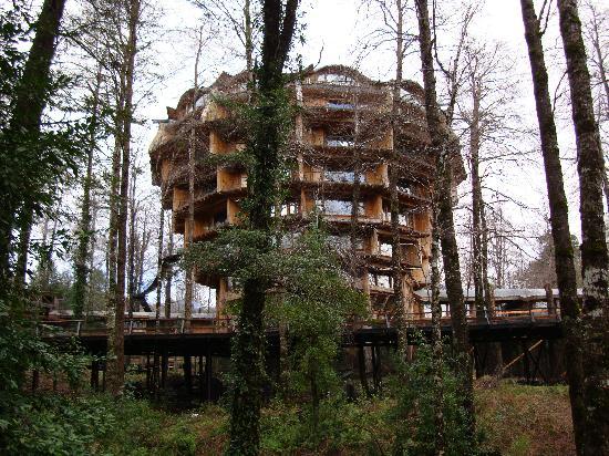 Huilo Huilo Nothofagus Hotel: La magnitud del edificio sorprende
