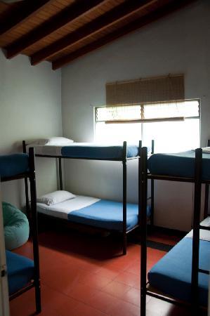 Saman Hostel Medellin: Iguaque Dorm