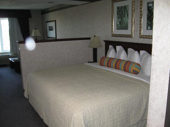 Phoenix Inn Suites Albany: Standarm room