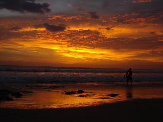 Hotel Surf Camp Mediterraneo : Playa Avellanas